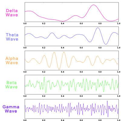deleta-theta-alpha-beta-gamma-brain-waves